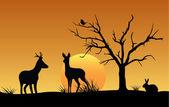 Silhouette von Hirsch, Hase und Vogel bei Sonnenuntergang