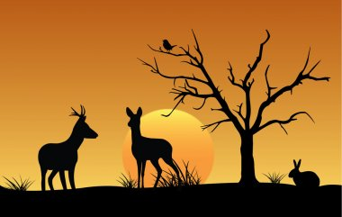Silhouette of deer, hare and bird at sunset