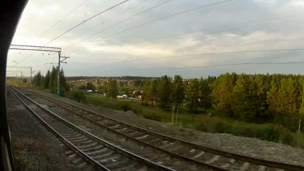 železniční trať s lesem kolem