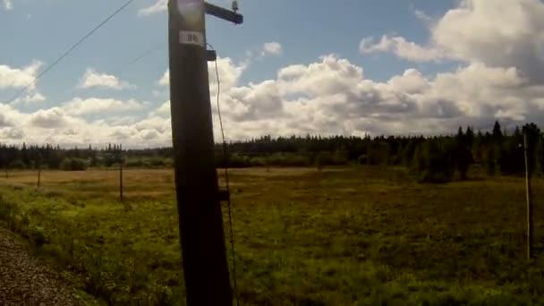 vlak kolem ploché krajiny s lesem