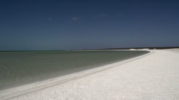 beach shellu v národním parku shark bay