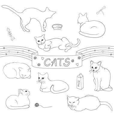 Contour cats set