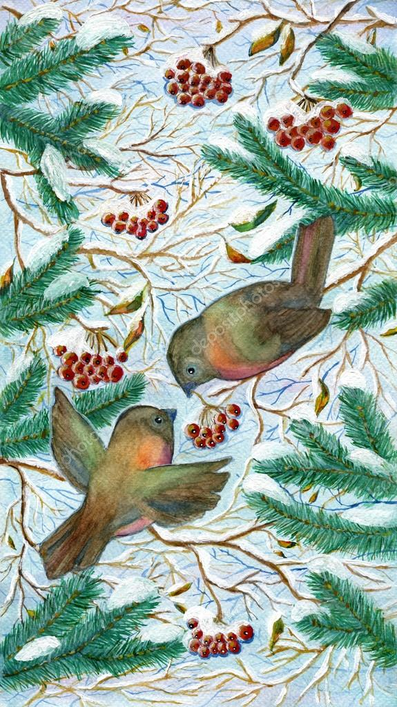 Winter birds with berries