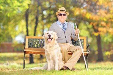Senior blind on bench with dog