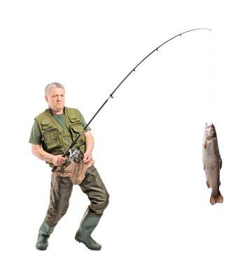 Mature fisherman catching fish