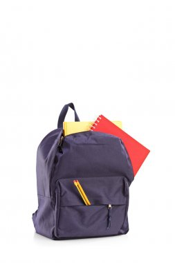 School backpack with books