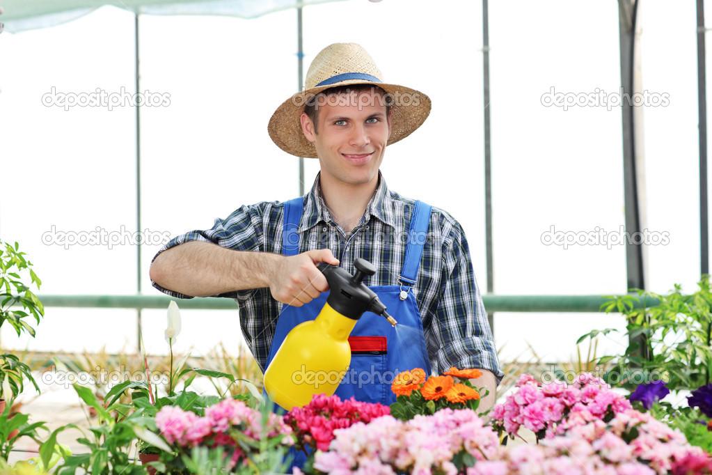 Jardinero masculino regando flores: fotografía de stock ...