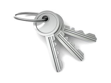Bunch of door keys on white background stock vector