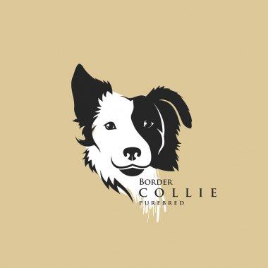 Border Collie dog - illustration clip art vector