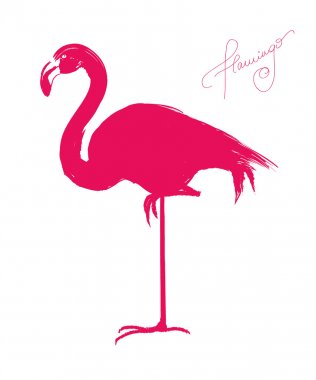 Painted flamingo bird