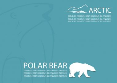 Polar bear background