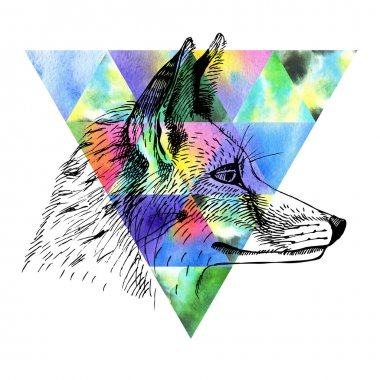 Fox and watercolor triangle.