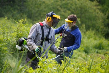 Men working with grass trimmer