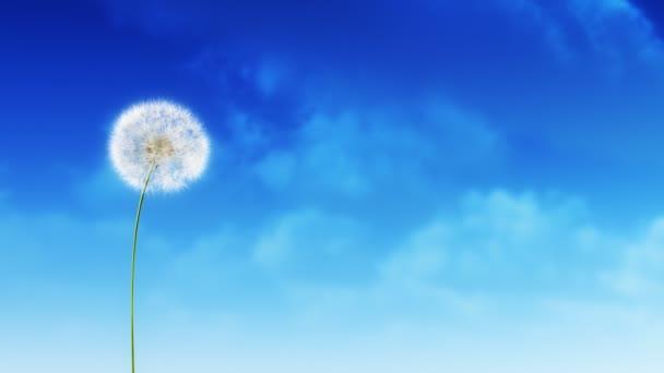 Pitypang felhők