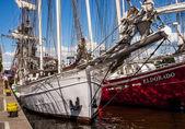 Plachetnice joanna saturna v přístavu