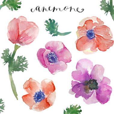 Watercolor Floral Bunches. Watercolor FLower Bunches. Groups of