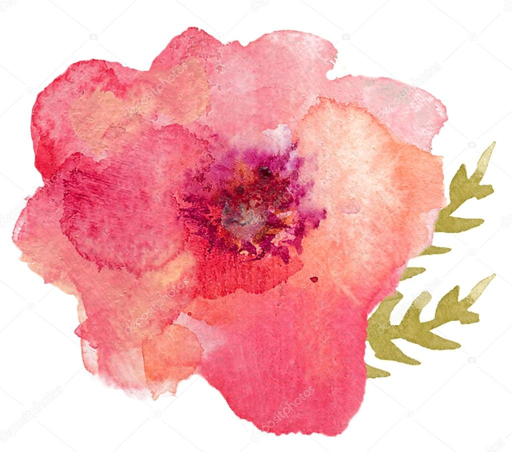 Single Watercolor Flower Stock Photo