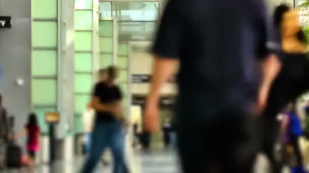 Airport Travelers Time Lapse Zoom