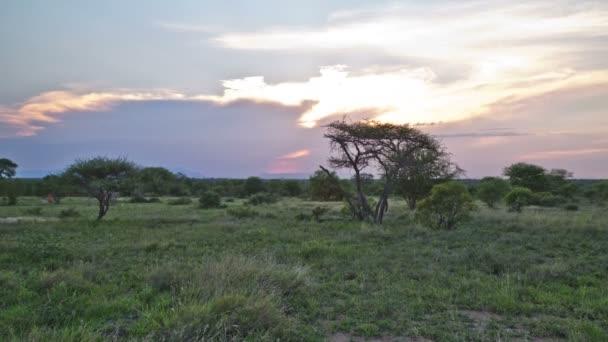 afrikai szavanna idő telik naplemente