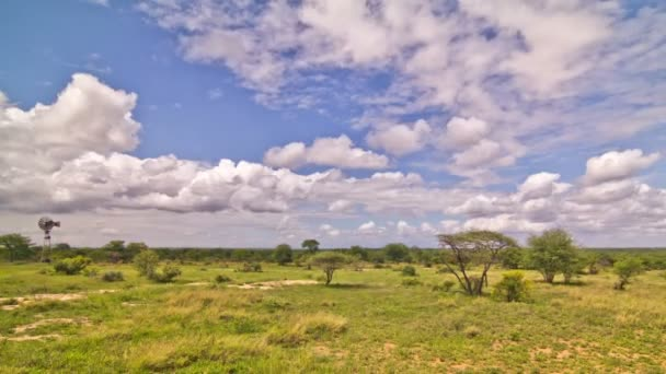 africké savany časová prodleva