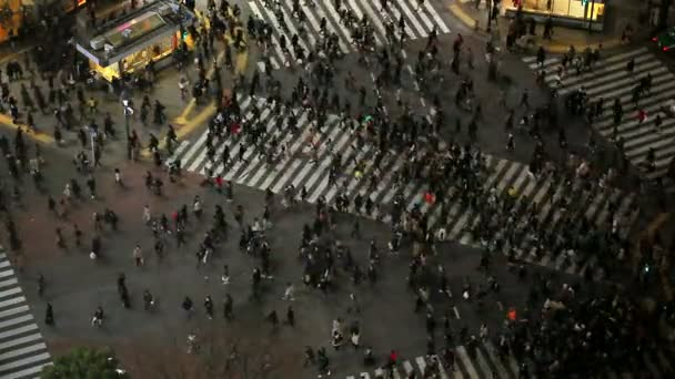 Famous Shibuya intersection at night in Tokyo.
