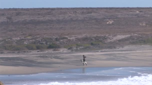 Surfer walking along ocean
