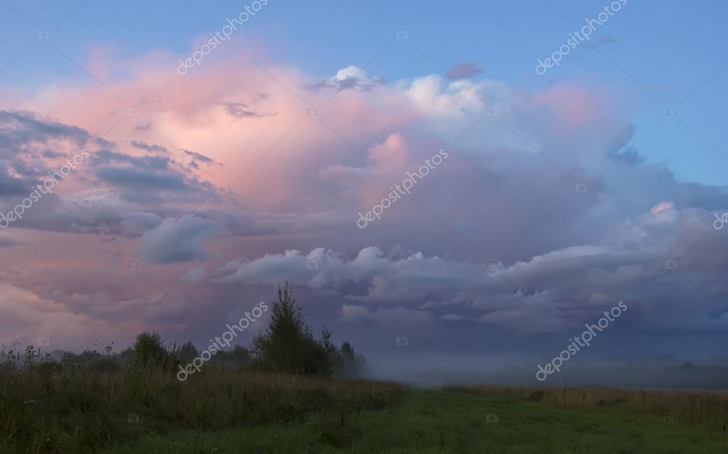 Russian field, Novgorod region ,Russia