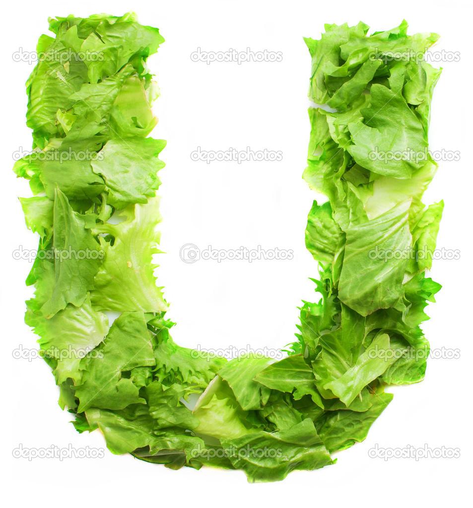 U & Us Home Design Studio Part - 37: U Lettuce Letter U2014 Stock Photo