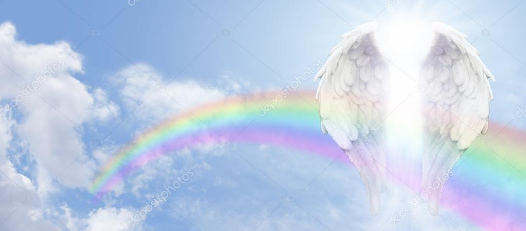 Forex angels sp. z o.o