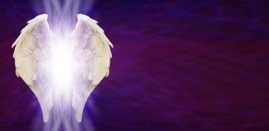 Purple Matrix and Angel Wings Banner