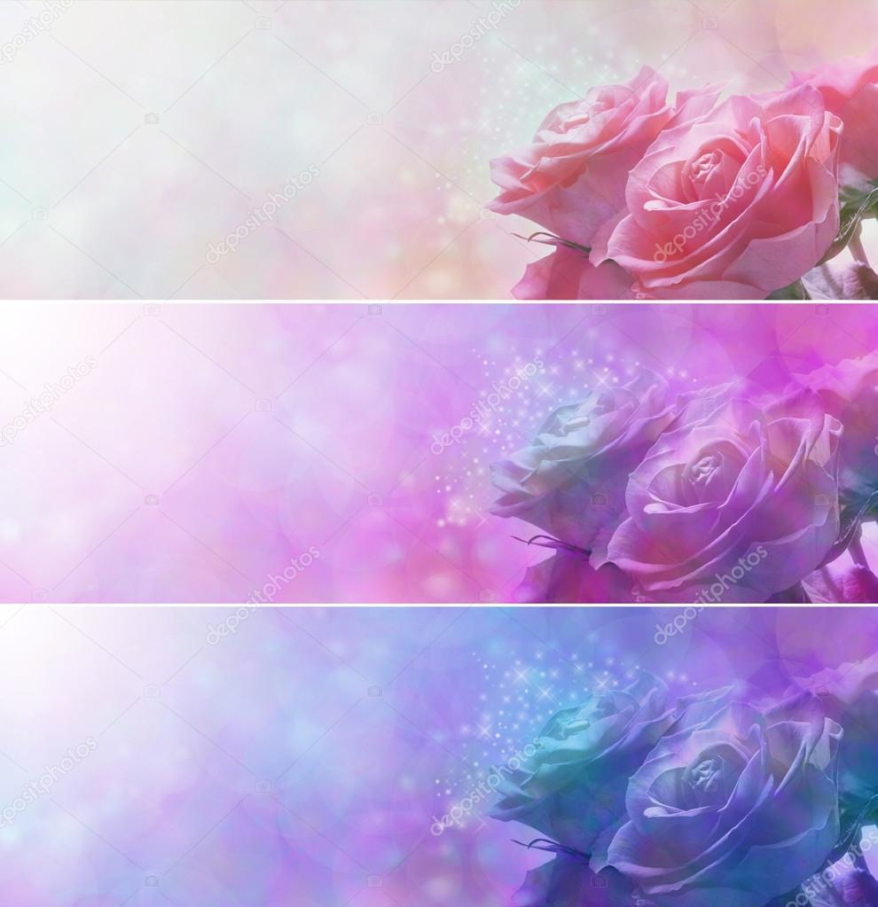 Soft sparkly romantic roses banner x 3