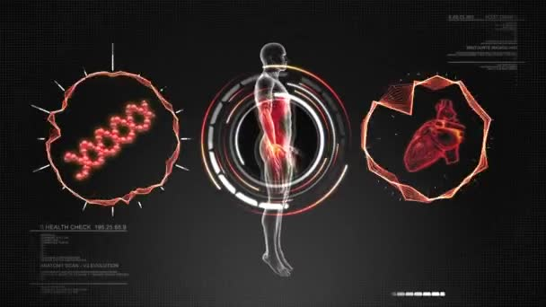 Human Body Anatomy scan with Heart and DNA - Animation LOOP
