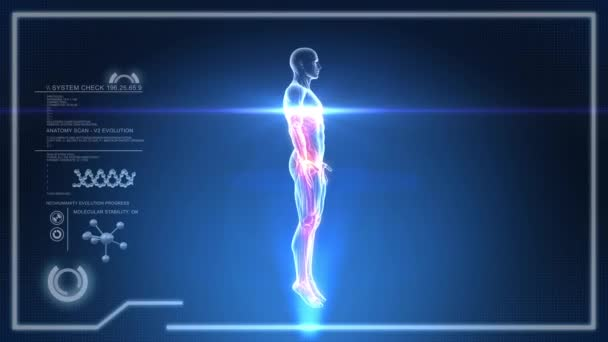 rotující lidské tělo kostní scan na digitální displej - animace smyčka