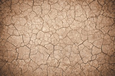 Cracked dirt background