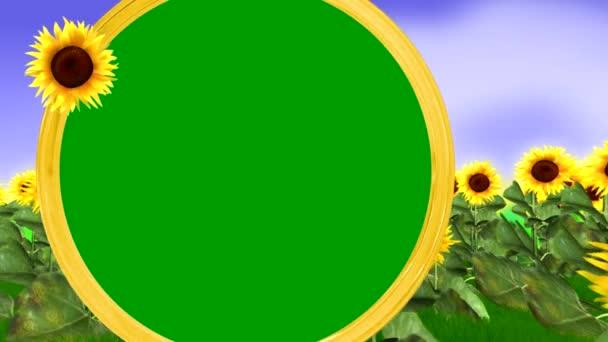 pole slunečnic a zelený kruh