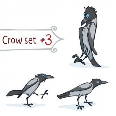 Hooded Crow Set