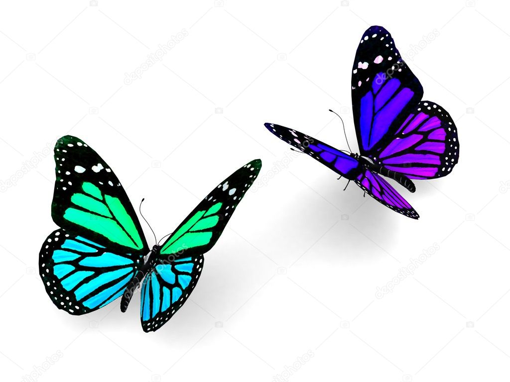 Colorful butterflies design concept — Stock Photo © Best3d #51221695