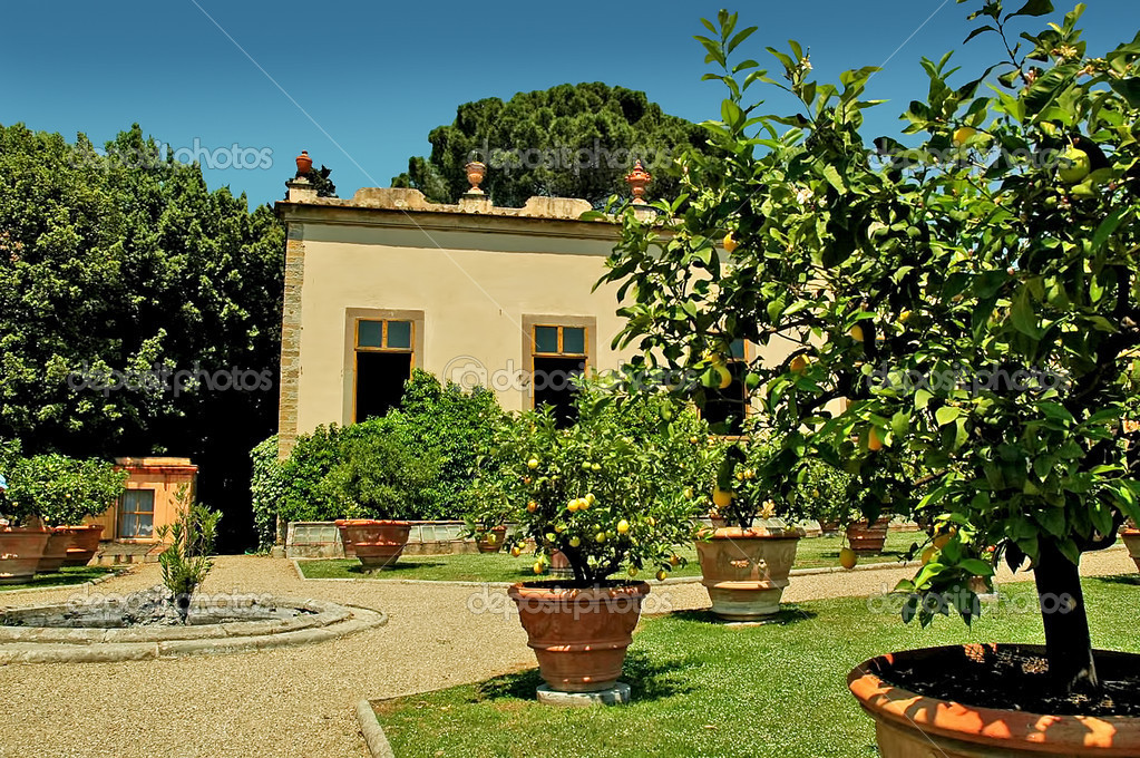 giardino all'italiana a settignano in toscana italia ? foto stock ... - Piccolo Giardino Allitaliana