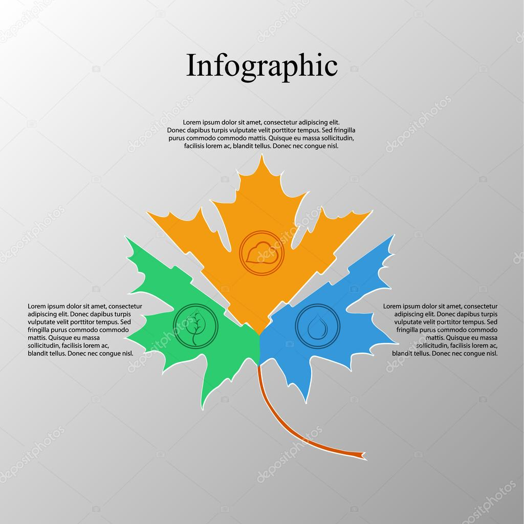 The infographic in the form of a maple leaf style flat