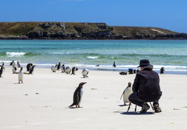 Photographer with penguins at Falkland Islands-3