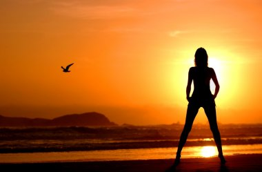 Sunset in Peru - silhouette outline contour of model mountain and seagull - glorious bright stunning halo golden sun  saturates image with warm and well being - feeling of freedom and happiness - g