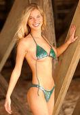 Fotografie Un-tied Bikini Top - Stunning Blonde Natalie