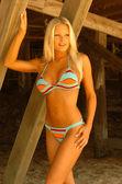 Tiffany Selby Playboy Playmate July 2007