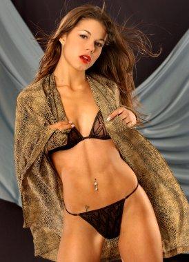 Leopard Robe - Black Bra - Sheer Panty