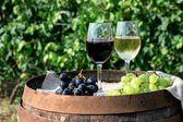 červené a bílé víno s hrozny v přírodě