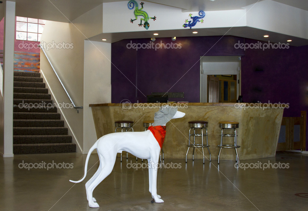 Interior Of A Modern Hotel With A Ceramic Dog Near The Front Desk U2014 Photo  By Karenfoleyphotography| ...