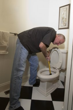 Plunging the Toilet