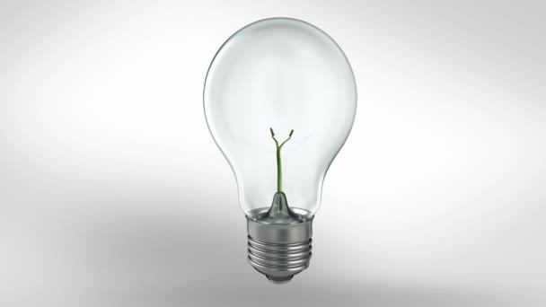 závod v žárovky. Zelená energie concept.hd
