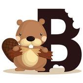 Fotografie Alphabet B for Beaver