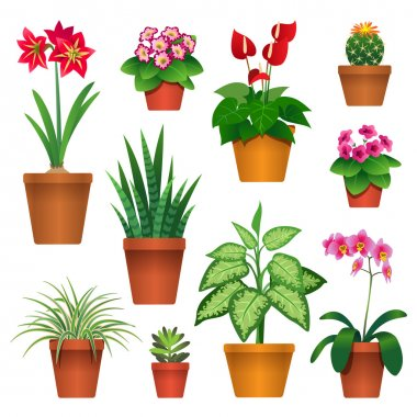 Set of houseplants in pots icons isolated on white background stock vector